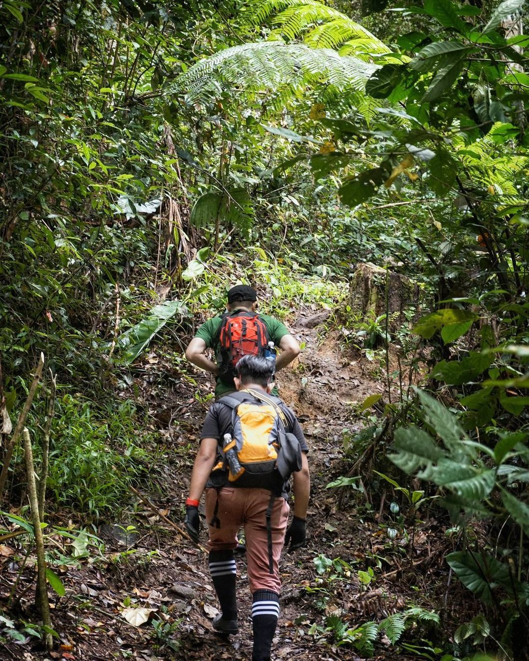 Photo: Hiking trail at Tinorindak Hill. Photo credit @eddo.ig