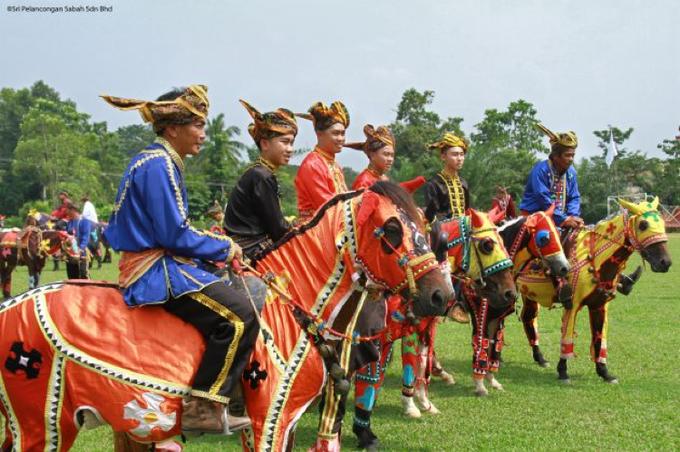 Photo: Colorful Bajau Horse, Kota Belud